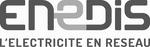 enedis (Copier)